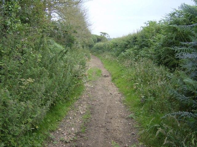 Bridleway towards Rookley