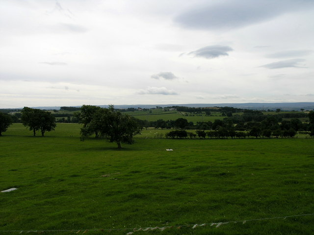 View From Streatlam Farm.