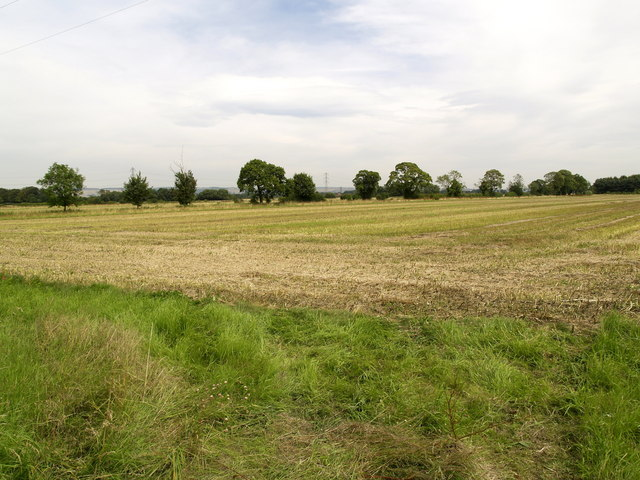 Fields north of Scampston