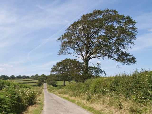 Lane at Lopthorne