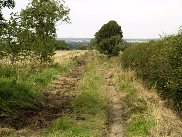 Little used bridleway at Francis' Ings