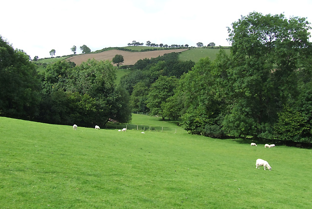 Farmland east of Llanddewi-Brefi, Ceredigion