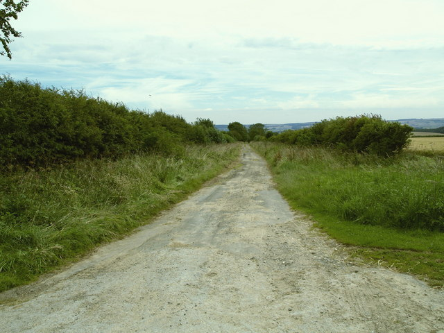 Track near Sawdon
