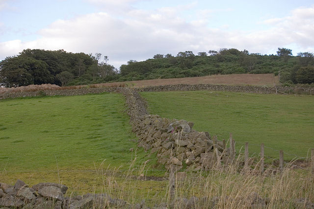 Dry stane wall