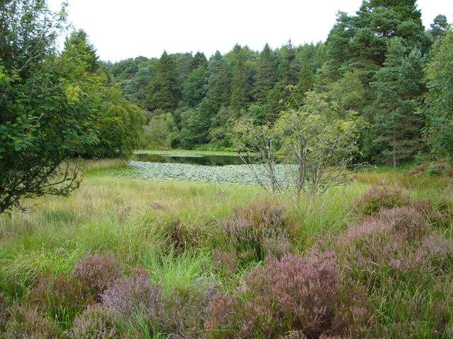 Drumshalloch Loch