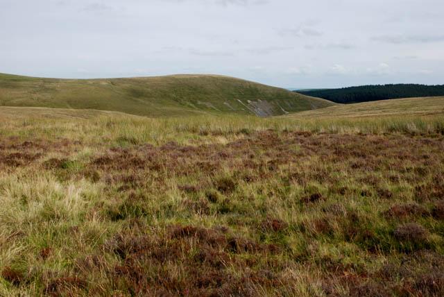 Moorland east of Glaslyn