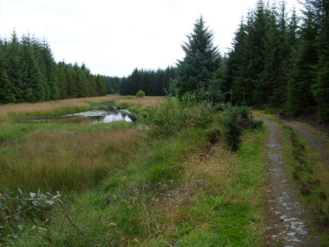 River Bladnoch above Polbae