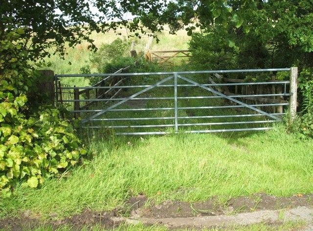 Bridge with double gates