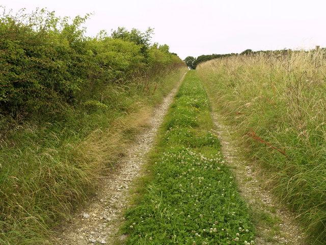 Mowthorpe Wold Bridleway