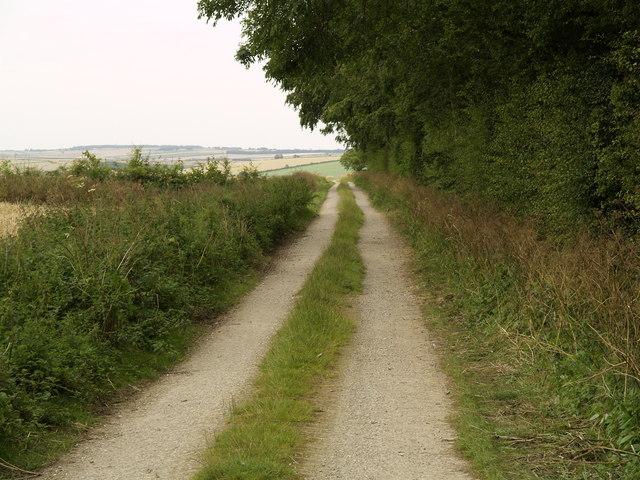 Bridleway next to Mowthorpe Plantation