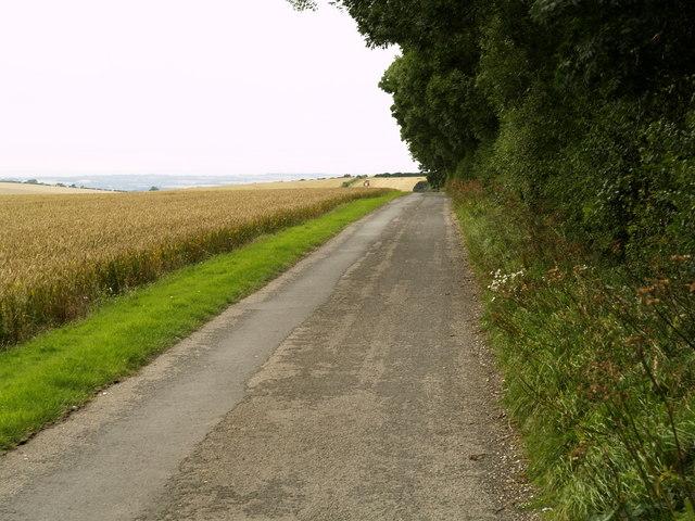 Mowthorpe Bridleway