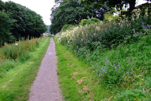 Deserted Path