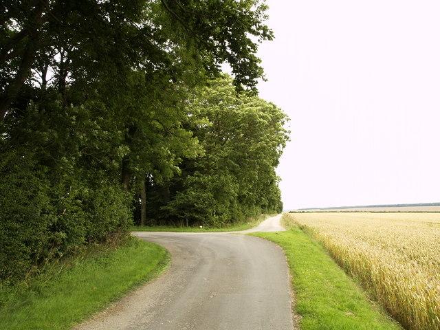 Bridleway/Road at High Mowthorpe