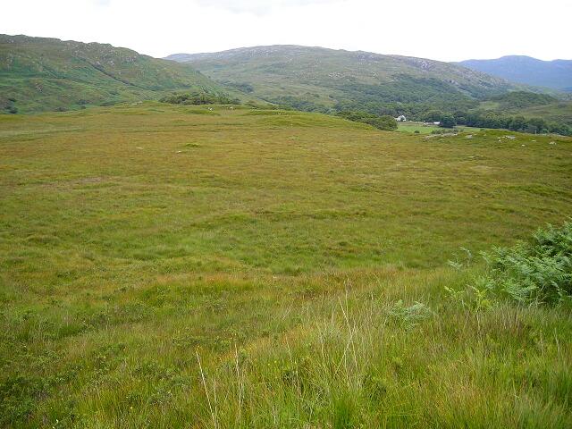 Bog Near Loch Arienas
