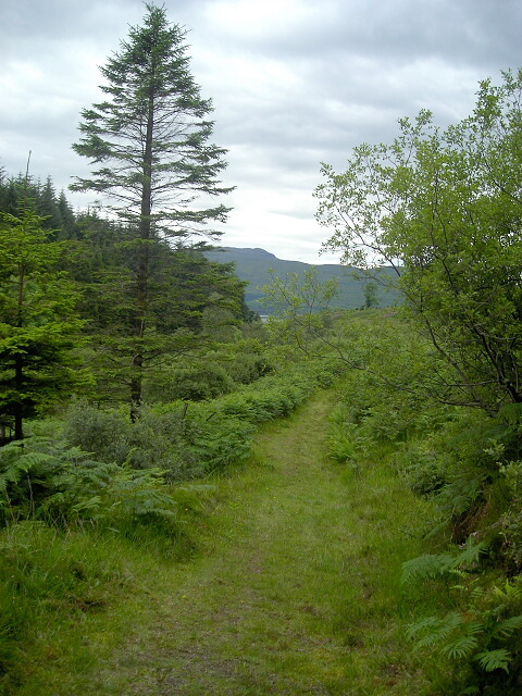 Path in Savary Glen