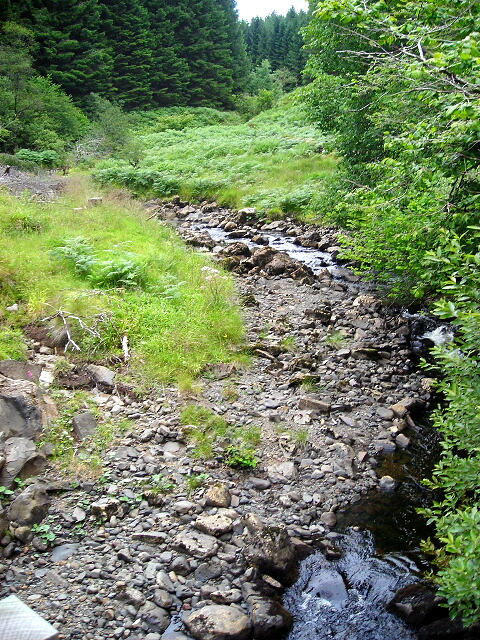 Savary River