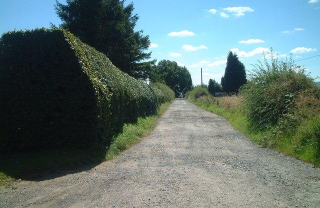 Bridleway south to Walkhamwood Farm