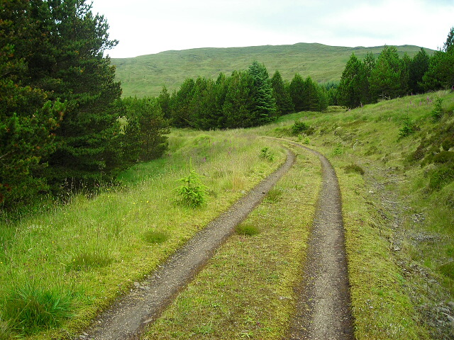 Track in Fiunary Forest
