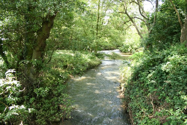 Stockwith Mill race