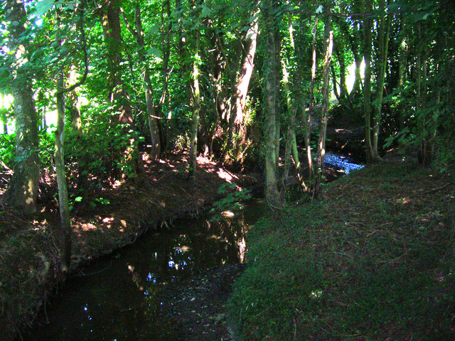 Unnamed Stream near Buttons Farm