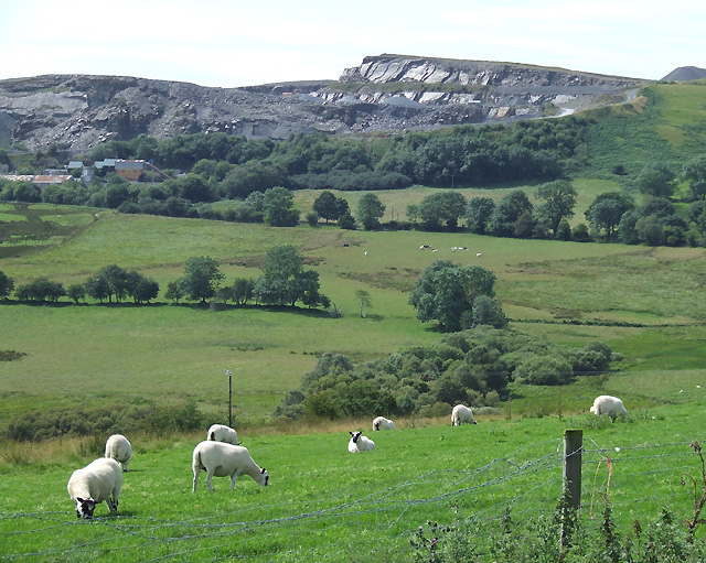 Sheep Grazing and Hendre Slate Quarry, Ceredigion