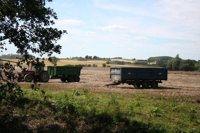 Sausthorpe harvest
