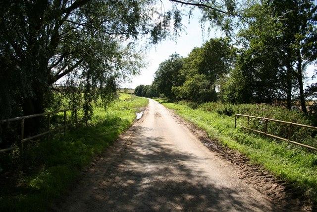 Lane from Sausthorpe Bridge