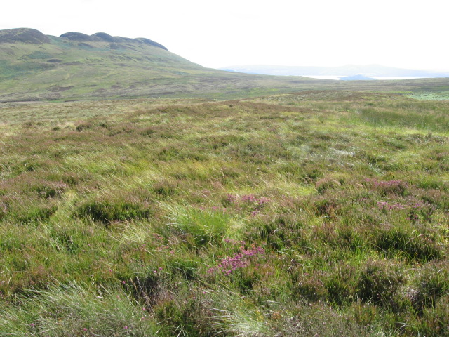 Moorland towards Conic Hill