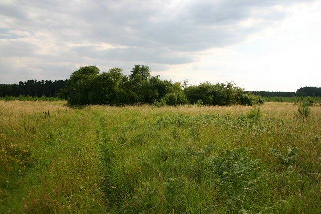 Dickey Pit, Croxton Heath