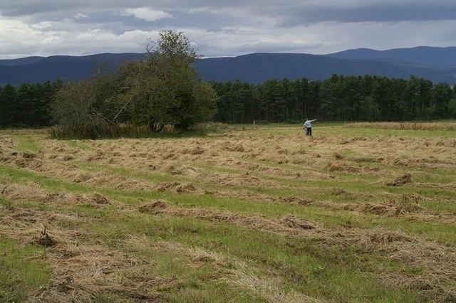 Site of a former croft near Culbo