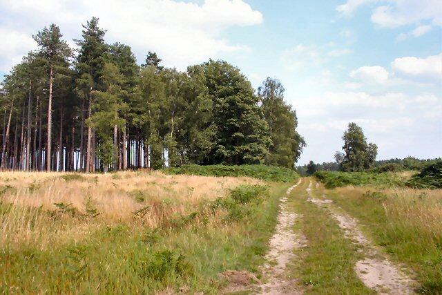 Hereward Way, Croxton Heath
