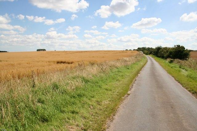 Road to Haugham