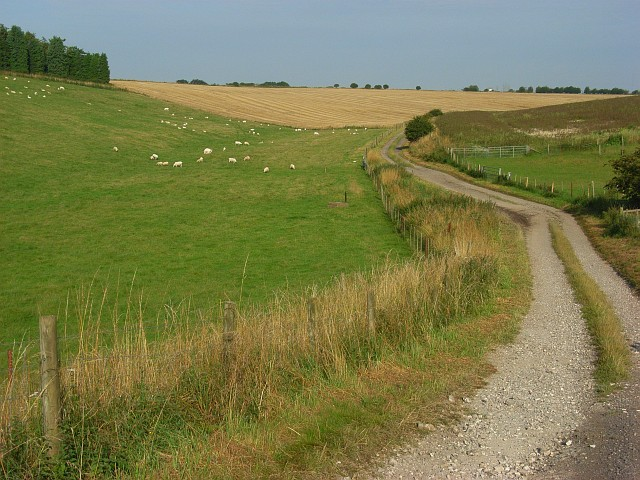 Farm track, Idmiston