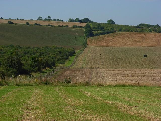 Farmland, Winterbourne Gunner
