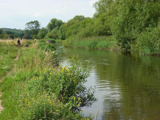 The River Avon, Salisbury