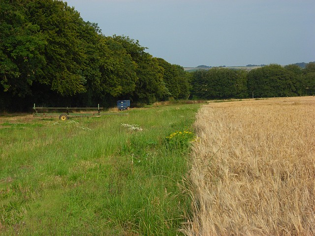 Farmland near Little Durnford