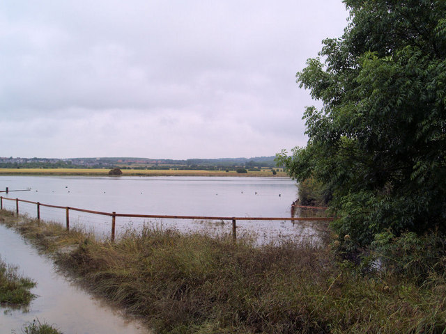 Flooded fields.