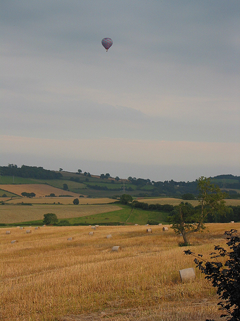 Farmland, late evening in August