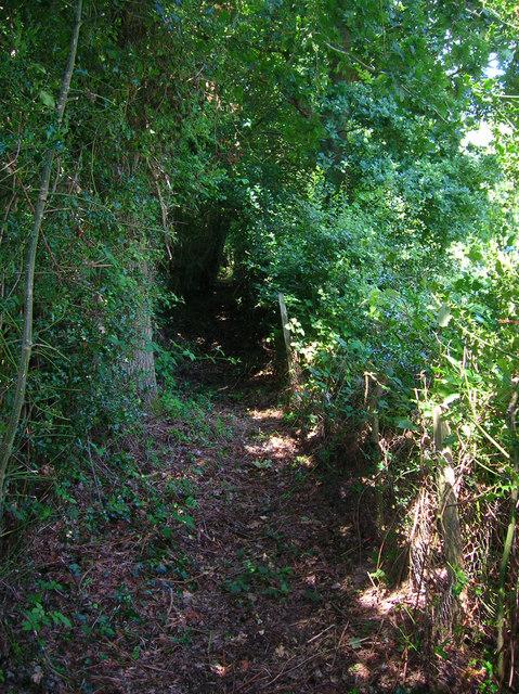 Footpath to Burgh Hill