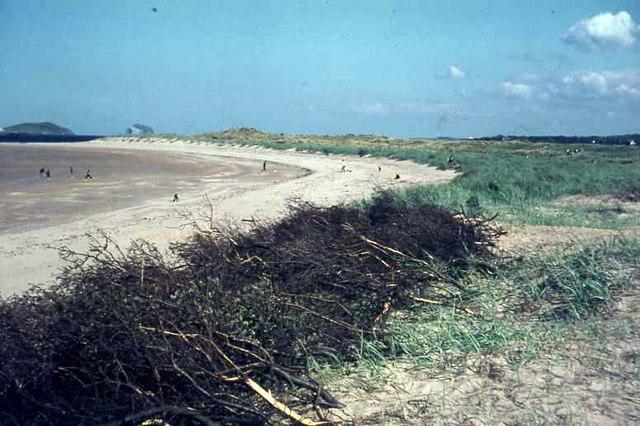 Yellowcraig, sand dune stabilization