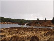 NR7563 : The Crannog by douglas r small