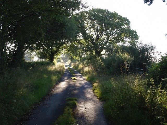 Dreybury Lane