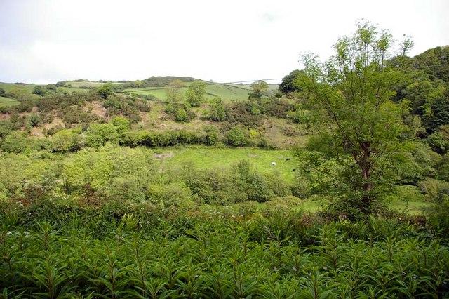 Sterridge Valley 2