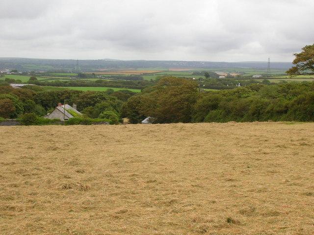 Haymaking above Trewiggett
