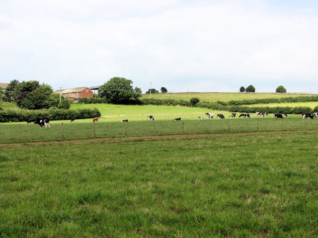 Across farmland