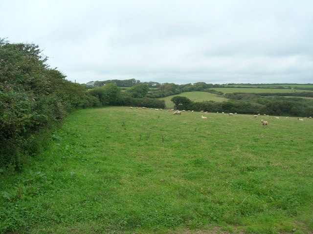 Farmland near Tregeare Rounds