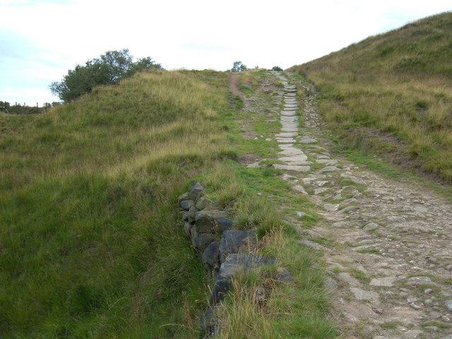 Pennine Bridleway above Walsden