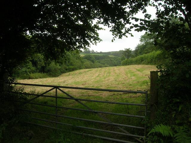Pengenna Valley Field