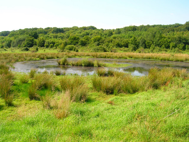 Rother Flood Plain