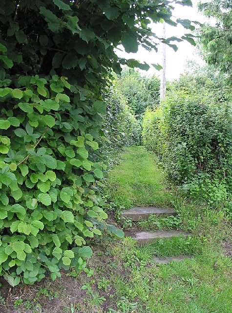 Steps at the start of the footpath